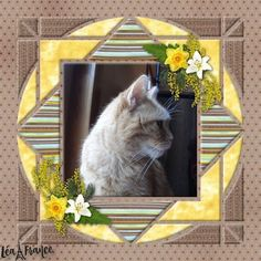 What an adorable cat scrapbooked using the Lea France Digital Country Patches 5 Template Scrapbook Templates, Digital Scrapbooking Layouts, Scrapbook Designs, Scrapbook Sketches, Scrapbook Page Layouts, Scrapbook Albums, Dog Scrapbook, Paper Bag Scrapbook, Scrapbooking