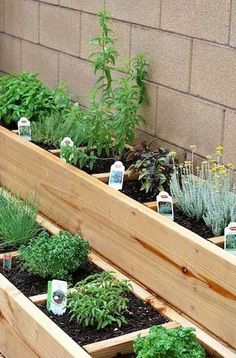 45 Top Inspiring Herb Garden Design Ideas And Remodel – Diy Garden Herb Garden Design, Vegetable Garden Design, Backyard Vegetable Gardens, Garden Landscaping, Herbs Garden, Gardening Vegetables, Square Foot Gardening, Small Gardens, Raised Garden Beds