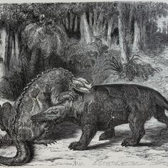 These early illustrations of dinosaurs have a kind of mythological feel to them!