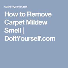 How to Remove Carpet Mildew Smell   DoItYourself.com