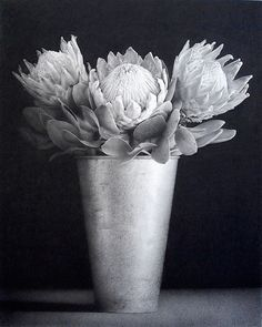 Paul Emsley,  charcoal on paper - Art Curator & Art Adviser. I am targeting the most exceptional art! See Catalog @ http://www.BusaccaGallery.com