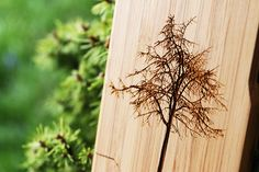 """""""Tree"""" Grove Case for iPhone 4/4S by GroveMade, via Flickr"""