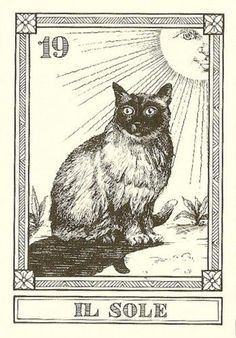 """Il Sole""-- Gatti, by Osvaldo Menegazzi. The deck of 22 tarot cards was published by Il Meneghello in Italy in 1990."
