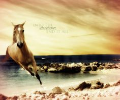 Ocean End It All by startalloverxx.deviantart.com on @deviantART