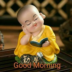 949 Best Morning images images in 2019 | Morning images