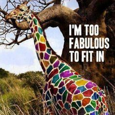 You are too fabulous to fit in!  So stand out:) #giraffe #inspiration #quote