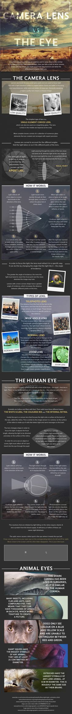 Lentes de cámara vs Ojo humano