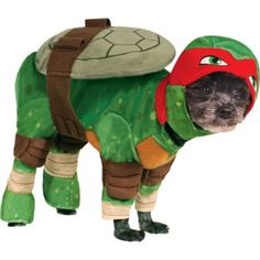 Teenage Mutant Ninja Turtles Raphael Dog Costume. I know what my little Muffin is going to be for halloween this year!  sc 1 st  Pinterest & Designer CollarsDog ClothesDog Costumes - Teenage Mutant Ninja ...