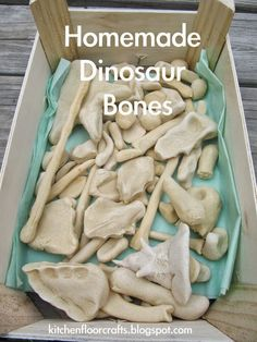 Homemade Dinosaur Bones - excavate and then reassemble a basic skeleton and then name your newly discovered dino!: