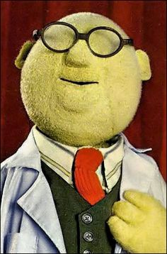 The Muppets - Dr. Bunsen Honeydew - science instructor/experiment demonstrator