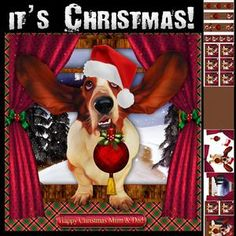 Basset Hound it's Christmas Card Kit, he's so excited and popped through the window to bring you holiday Cheer! Complete with backing paper, sentiments, elements, bookmarks, tags