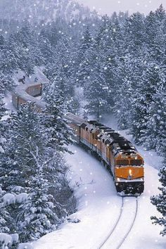 I love trains in the winter. When I was a young child in 1950 trains were lo… I love trains in the winter. When I was a young child in 1950 trains were longer. I know this for a fact. I used to count the cars attached to the two big . Winter Szenen, Winter Magic, Winter Park, Winter Travel, Winter Time, Winter Season, By Train, Train Tracks, Train Rides