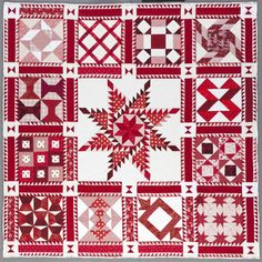 Feathered Star and sampler blocks red and white qullt