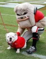 History of Georgia Bulldog Mascots