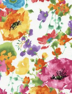 Timeless Treasures Day Dream Watercolor Floral