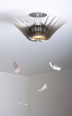 David D'Imperio - Pendant Ceiling | Medusa
