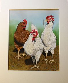 Pastel painting of my sisters beautiful hens!
