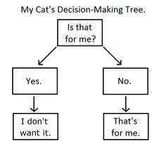 Cat Decision Making Tree