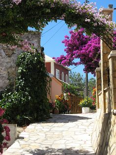 Street in the village of Afionas, Corfu Island, Greece (by Gary).