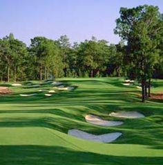 Pinehurst, NC, Golf? Of Course!  Once again, we hosted the US Open in June of 2014!
