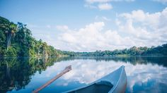 """Cocococha lake deep in the Tambopata National Park. It forms an important habitat for many of the endangered and emblematic species such as macaws, black caimans and giant river otters that can feed and reproduce in peace here.  Feel free to follow my work: <a href=""""https://www.facebook.com/ShotByCanipel"""">Shot by Canipel</a> & <a href=""""https://instagram.com/canipel/"""">Instagram</a>"""