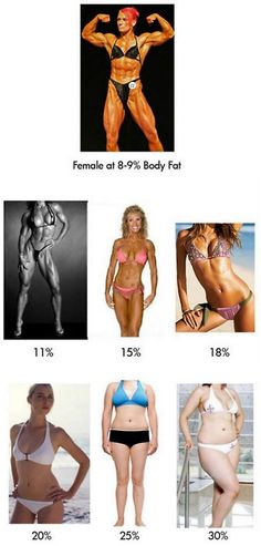 what body fat percentage looks like..good to know.