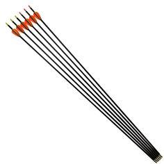 Elong Outdoor Product Ltd Carbon arrow