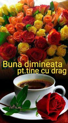Good Morning Nature, Good Morning Images Flowers, Good Morning My Love, Happy Morning, Good Morning Wishes, Morning Greetings Quotes, Morning Quotes, Most Beautiful Flowers, Beautiful Birds