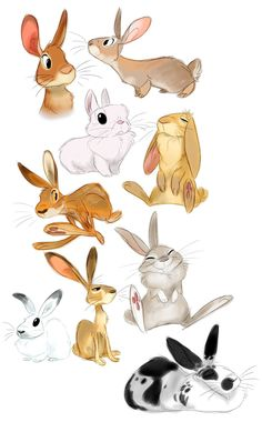 The Amazing Art of Andrew Wamboldt! http://heffysdoodles.tumblr.com/post/81610281883/some-warmup-buns-with-a-special-guest-some-may ★ || CHARACTER DESIGN REFE