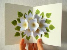 stamped leaves seven flower pop up