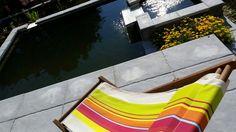 1ers rayons de soleil sur le bassin