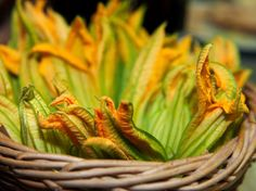 Carla Gozzi Zucchini flowers  ricetta