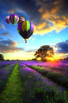 Magical Colours | Amazing Pod