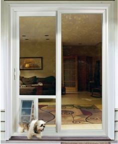 Sliding Door Dog Door e1368975877463 Dog Entry Doors Need Not Make Use Of A Door