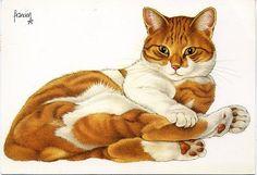 Au Fil Des страницы ...: Кошки Ван Westering Francion