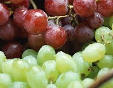 The Dirty Dozen: Foods To Always Buy Organic