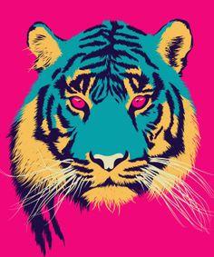 tigre colors