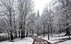 Winter Wallpapers 6  #WinterWallpapers #Winter #nature #wallpapers