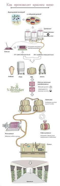 Как делают красное вино by Bewinemaker via slideshare. #Winery, #grapes, #wine, #vineyard, #vino, #winetasting, #beautiful, #wedding, #pretty, #travel, #crimea, #forsale, #winelover, #ww, #Moscow, #online, #vin, #wino, #wijn, #vine, #vinos, #winery, #pinotnoir, #bewm, #bewinemaker, #winemaker