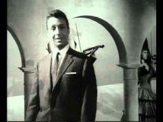 1963 Spaziergänge in Wien   03 An der Donau wenn der Wein blüht (+playlist)