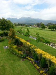 Garden in George garden route