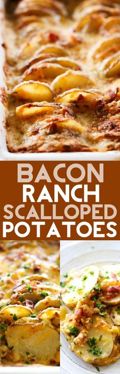 Bacon Ranch Scalloped Potatoes | Chef-in-Training | these are LOADED with incredible flavor. It will an instant favorite and soar to the top of your family's favorite side dishes!