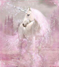 The Unicorn Hunt: Photo Unicorn And Fairies, Unicorn Fantasy, Real Unicorn, Unicorn Horse, Unicorns And Mermaids, Unicorn Art, Fantasy Art, Magical Unicorn, Magical Creatures