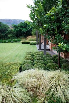 Achieving a garden that is pleasing to the eye year-round is a feat but not impossible