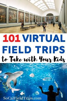 With school out, visit places and travel virtually with these 20 virtual field trips you can take with your kids. # 20 Virtual Field Trips to Take with Your Kids Educational Activities, Learning Activities, Toddler Activities, Shark Activities, Summer School Activities, Human Body Activities, Educational Websites, Indoor Activities, Teaching Ideas