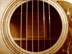 Martin acoustic guitar nogoodgtrpicker