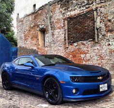 Blue camaro magnificent