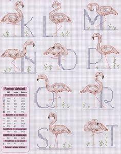 Flamingo alphabet