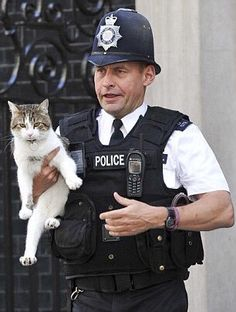 The Independent ‏@Independent 7月13日 翻訳を表示 Here's what happens to Larry the cat when Theresa May moves in at No 10 http://i100.io/cgJ9Rqh   Bingによる英語からの自動翻訳 誤った翻訳ですか? Heres にテレサがあります No 10 http://i100.io/cgJ9Rqh に移動したときにラリー猫に何が起こるか