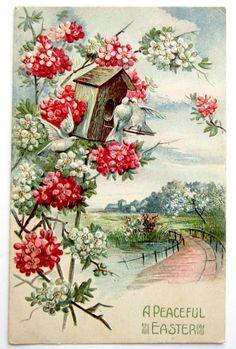 Peaceful Easter White Doves Birdhouse Flowering Tree Postcard Emb | eBay